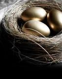 Гнездо пенсии Стоковые Фото