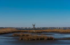 Гнездо птицы в соленых болотах Стоковая Фотография