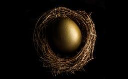 Гнездо птицы с золотым яичком Стоковая Фотография RF