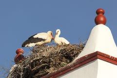Гнездо с аистами na górze печной трубы Стоковое Изображение RF