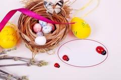 Гнездо с яичками и цыпленоками compisition пасха Стоковые Изображения RF
