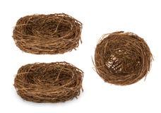 Гнездо украшения пасхи декоративное для изолированных яичек Стоковое фото RF