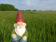 Гном сада с бородой и красной шляпой Стоковая Фотография