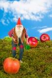 Гном сада с моча чонсервной банкой Стоковое фото RF