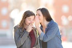 Говорить женщины сплетни секретный к ее счастливому другу стоковые фотографии rf