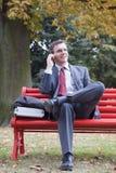говорить сотового телефона бизнесмена Стоковые Изображения RF