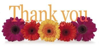 Говорить спасибо с цветками Стоковые Изображения
