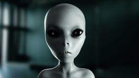 Говорить чужеземца конец вверх UFO кинематографический отснятый видеоматериал 4k иллюстрация вектора