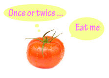 Говоря томат изолированный на белой предпосылке Стоковое фото RF