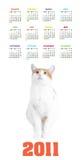 год вертикали цвета 2011 календара Стоковая Фотография