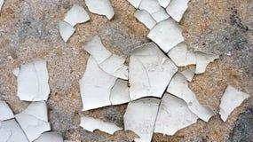 Год сбора винограда краски деревянной стены старый стоковые изображения rf