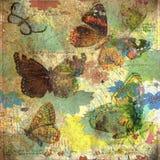 Год сбора винограда - рамка предпосылки коллажа бабочки Стоковые Изображения