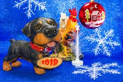 Год 2018 год собаки Стоковое Изображение RF