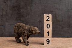 Год 2019 финансовый или концепция рынка с понижательной тенденцией вклада с медведем стоковые изображения