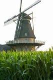 Голландская ветрянка, малая деревня в северном Брабанте, мельница и мозоль fi Стоковое фото RF