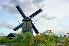 Голландская ветрянка с wildflowers Стоковая Фотография RF