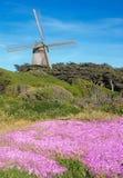 голландская ветрянка francisco san Стоковые Изображения