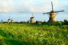 голландские станы ландшафта Стоковые Изображения RF