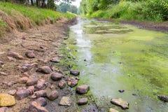 Голландский поток с уровнем отлива летом стоковые изображения rf