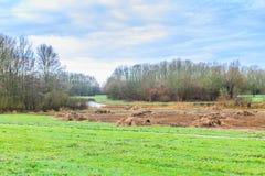 Голландцы благоустраивают вдоль реки Rotte и Rottemeren стоковое изображение rf