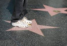 Голливудская звезда Стоковые Фотографии RF