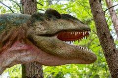 Голова аллозавра стоковая фотография rf