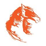 Голова лошади с гривой летания Иллюстрация руки вектора drowing Изолированное изображение мустанга на белой предпосылке Стоковые Фото