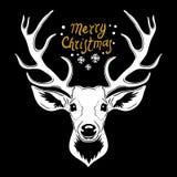 Голова оленей Белый силуэт вектора головы оленя с antlers изолированными на черной предпосылке бесплатная иллюстрация