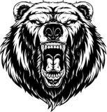 Голова свирепого медведя иллюстрация вектора