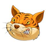 Голова талисмана кота иллюстрация вектора