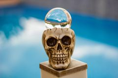 Голова черепа и шарик стекла фотоснимка стоковые изображения