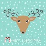 Голова Reindeeer рождество веселое Тросточка конфеты Милая сторона оленей шаржа с курчавыми рожками Голубая предпосылка хлопь сне Стоковая Фотография