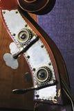 головка баса близкая вверх по upright Стоковое Изображение