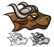 Головка буйвола Стоковые Изображения