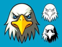 головка облыселого орла Стоковое Изображение