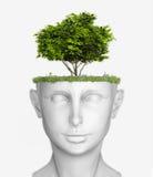 Головка с деревом бесплатная иллюстрация