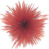 головка цветка Стоковые Фотографии RF