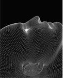 головное жизни wireframe все еще Стоковое Изображение