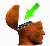 головной входной сигнал Иллюстрация вектора