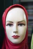головной платок Стоковая Фотография