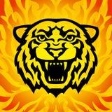 головной тигр талисмана Стоковое фото RF