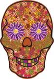 головной череп Стоковое Изображение