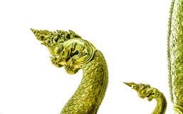 2 головных naga Стоковая Фотография