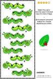 Головоломка изображения гусениц - запятнайте отраженные изображения Стоковая Фотография RF