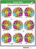 Головоломка изображения с цветниками иллюстрация вектора