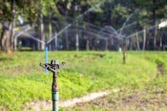 Головы спринклера и wate весны Стоковое Изображение