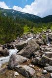 голодает река горы Стоковая Фотография