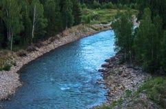 Голодайте брызгающ реку горы с лесными деревьями вдоль скалистого банка, горами Altai, Казахстаном Стоковое Изображение