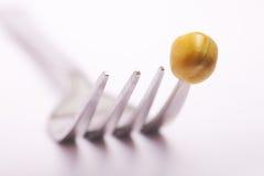 голод диетпитания анорексии весьма водит к Стоковое фото RF