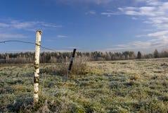 Гололедь поля Стоковая Фотография RF